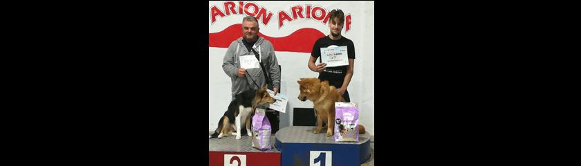 La protectora de animales reúne a más de 30 perros en el III Concurso de belleza canina