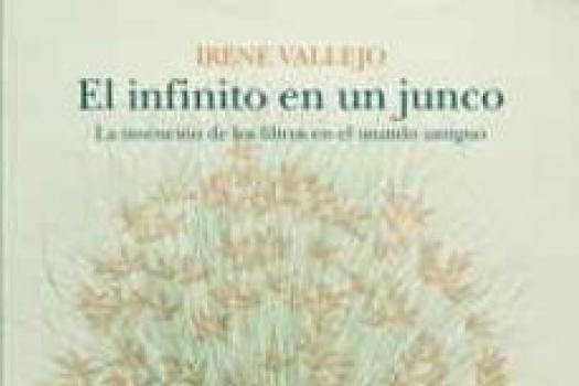 Irene Vallejo- El infinito en un junco
