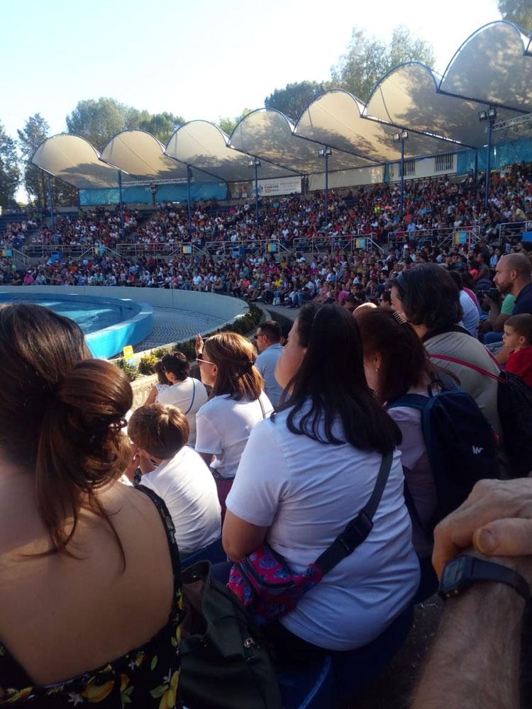 Los chavales de Amfisa visitaron el zoo de Madrid