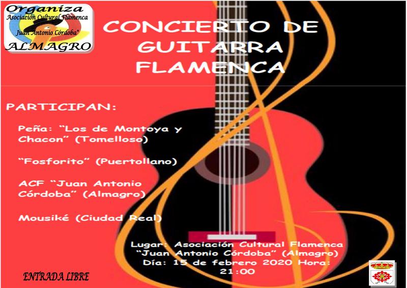 Concierto guitarra flamenca